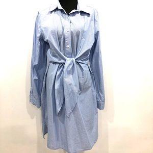 Max Studio pinstripes shirt dress